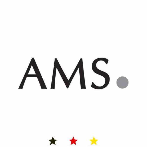 AMS, Bauhaus Quartzwanduhr, silber gross_15426