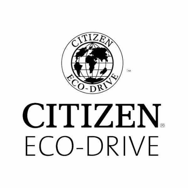 CITIZEN Klassik Eco-Drive Solaruhr, Edelstahl Leder_20118